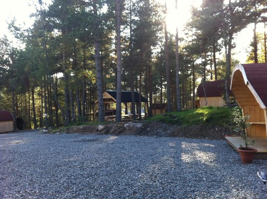 Camping Pod Heaven: Home in the forest