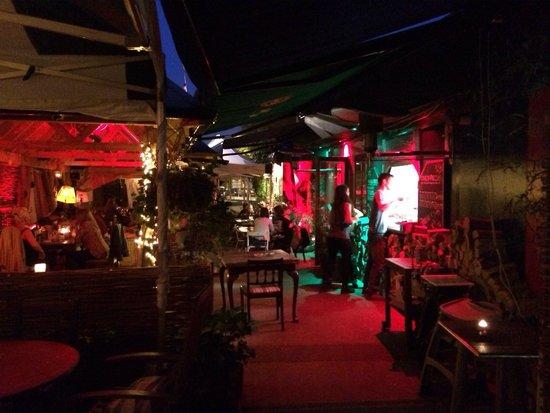 The Dog House Blues Tea Room: The outdoor area