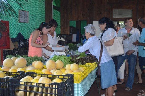 Mercado Agro Artesanal: Verduras y Hortalizas Mari