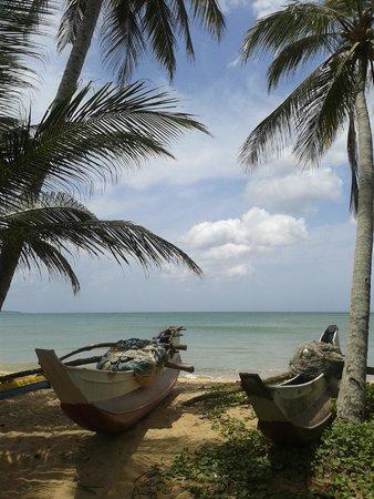 فيلا تانجال لاجون: Пляж