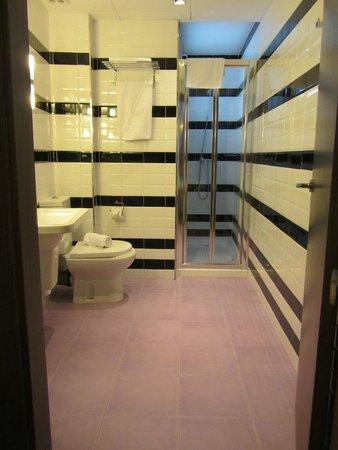 Hotel La Catedral: baño