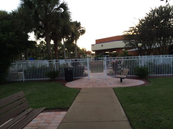 Red Lion Hotel Orlando - Kissimmee Maingate : Courtyard - well kept grounds and nice landscaping
