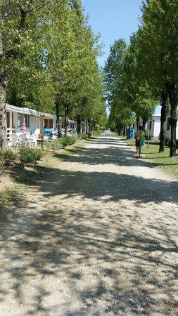 Camping Ca' Savio: Vialone bungalow