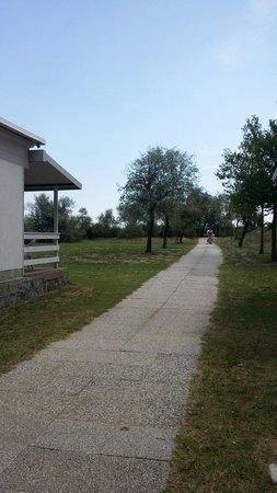 Camping Ca' Savio: Verso la spiaggia