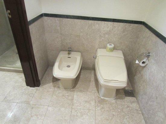 بيرجايا تايمز سكوير هوتل: Toilet area