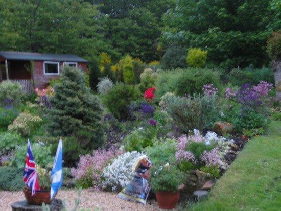 Braigha: Part of the garden
