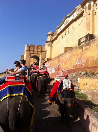 Nahargarh Fort: Elephant rise to the fort