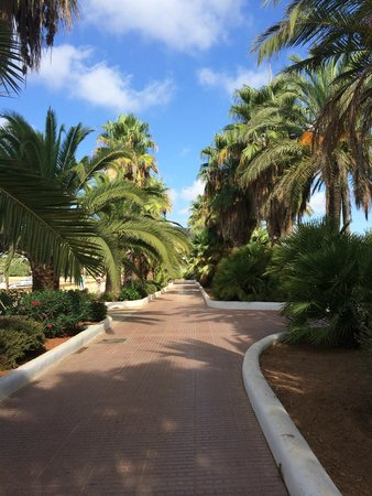 أبارت هوتل تروبيك جاردن: Walk to the town and Beach