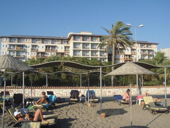 Club Cactus Paradise: La vue de la plage