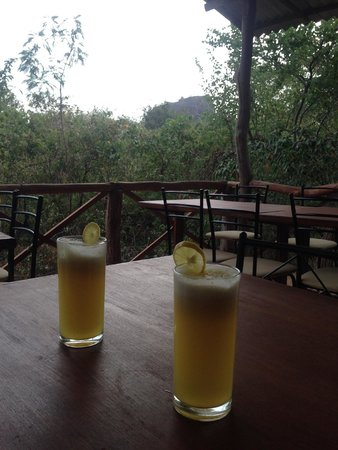 ‪‪Thick Forest‬: pineapple juice with view‬
