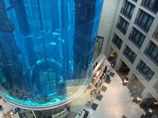 فندق راديسون بلو، برلين: View from Elevator