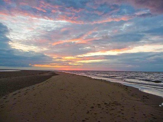 The Hideaway - Wild Luxury: Local Beach