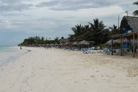 Melia Cayo Coco: Praia
