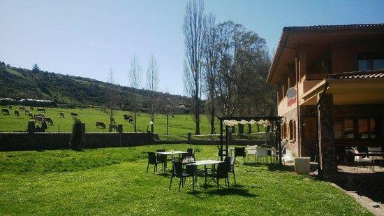 Hotel Villaneila: jardines