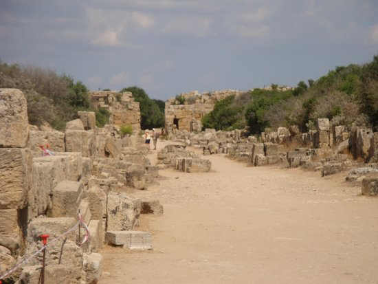 Selinunte : The main street of the Acropolis