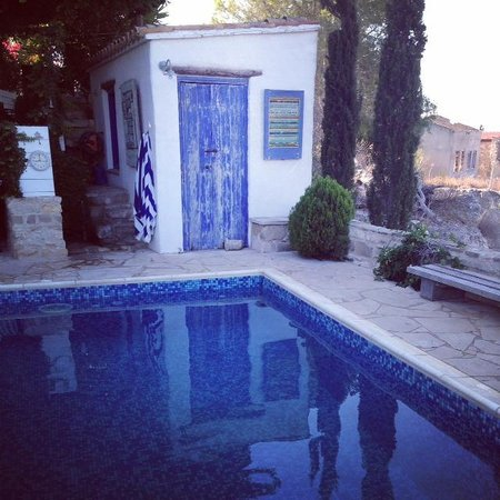 Little Lodge Guest House: the pool area with hidden outdoor shower