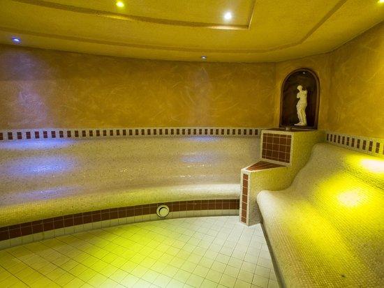 Hotel Spa Diana Parc: spa