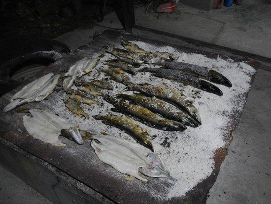Danube Delta Resort: Pike baked in salt on a board.