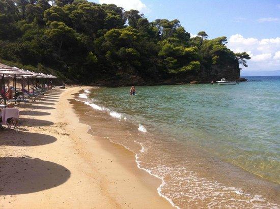 Hotel Villa Alexis: tsougria island