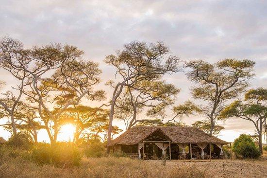 Kuro Tarangire, Nomad Tanzania: getlstd_property_photo