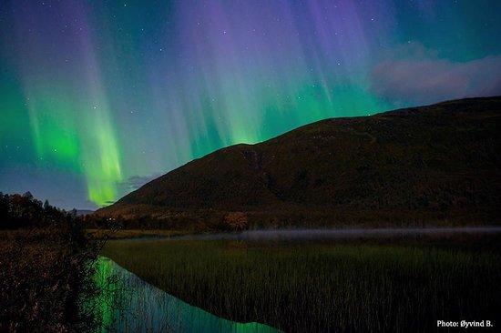 Arctic Experience Tromso: Autumn lights