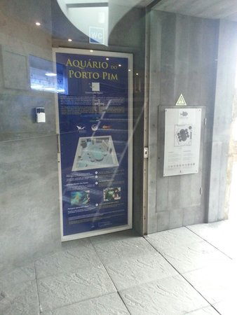 Porto Pim Aquarium: Entrada.