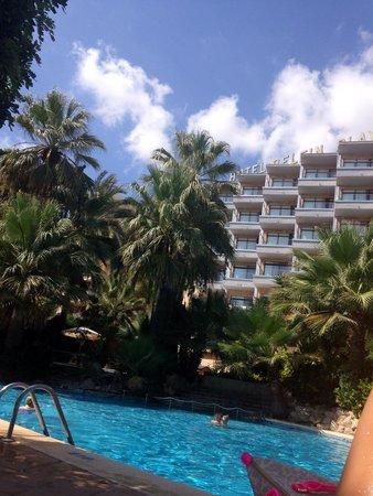 Hotel Mallorca Senses Palmanova: Delfin Playa