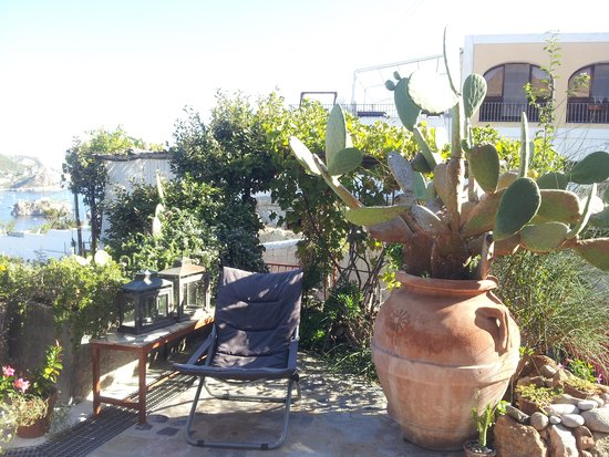 Villa Laetitia: Giardino