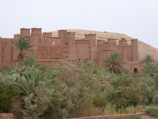 Desert Dream: kasbah tifoultoute