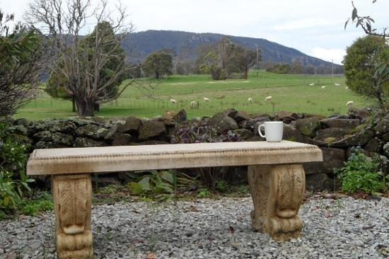 بلاكوود بارك كوتيدجيز: view from hobbit cottage