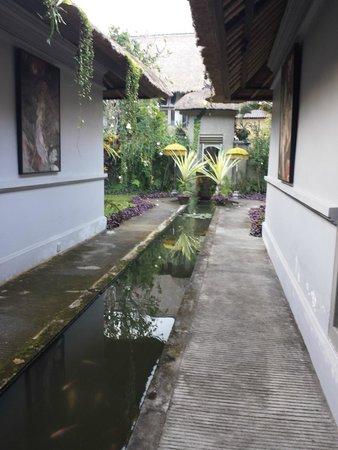 فيلا بوري دارما أجونج: Pond between the bedrooms