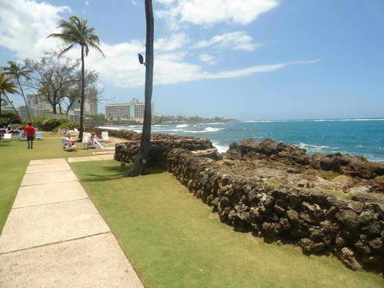 The Condado Plaza Hilton: Great View of the Grounds...