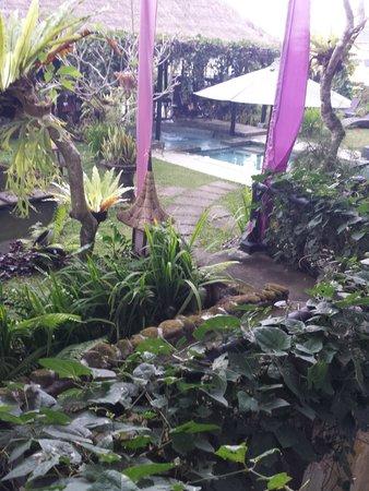 فيلا بوري دارما أجونج: Stairway to the 'treehouse'