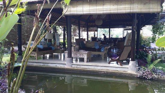 فيلا بوري دارما أجونج: Lounge/dining/kitchen view