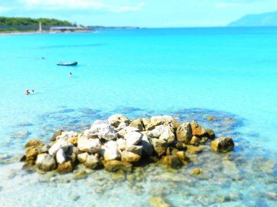 Isola di Pianosa: 7