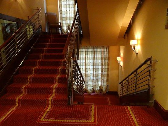 بست ويسترن بريمير هوتل أستوريا: Escalier