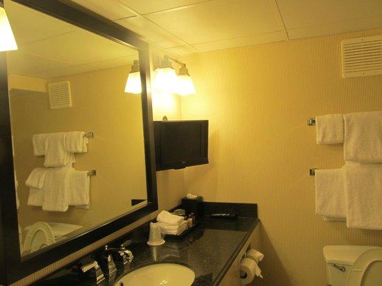 فندق شيراتون أون ذا فولز: TV IN BATHROOM