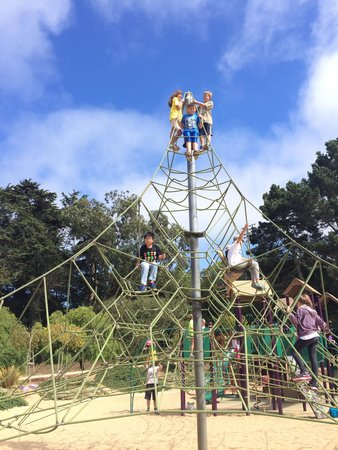 Guide To San Francisco For Families Travel Guide On