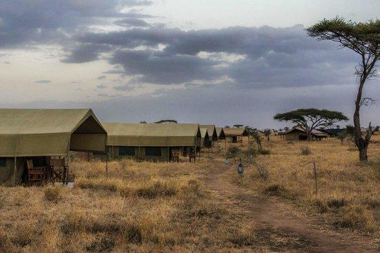 Pumzika Safari Camp: Vista de una de las alas de tiendas del campamento.