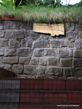Porcupine Castle Resort: Procupine Castle Board
