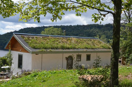 Blue Moon Rising: Office building notice living roof