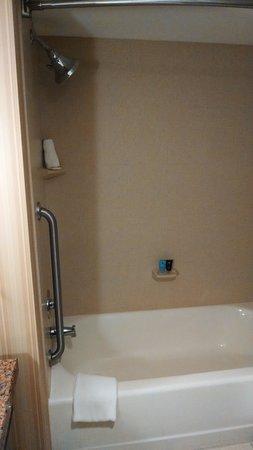 كراون بلازا ميلووكي إيربورت: shower and tub