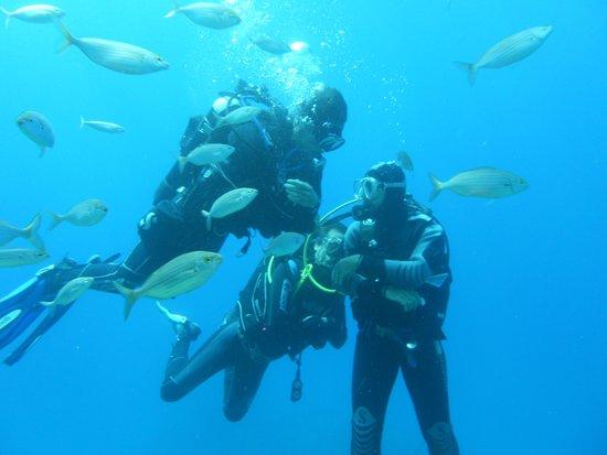 Blue Sea Diving Center: divers