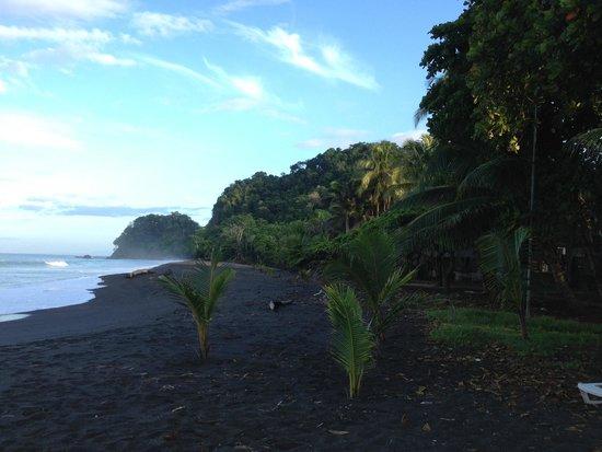 فويجو دي سول: Praia na frente do hotel