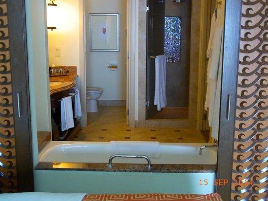 فندق اتلانتس ذا بالم: Bathroom