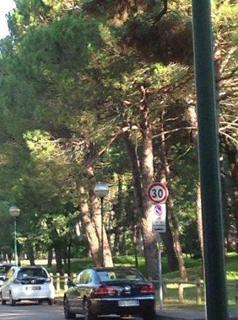 Parco Hemingway Villaggio: парк хемингуея