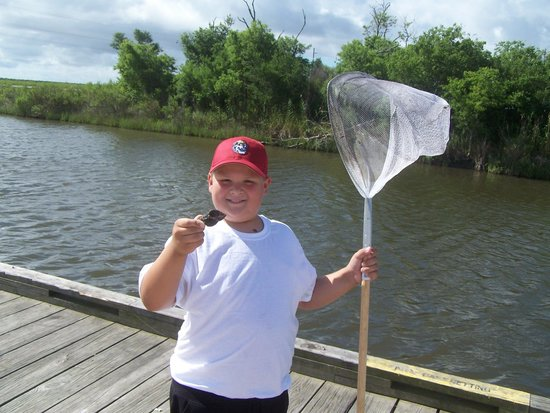 Creole Nature Trail: Sebastian what are you doing in Louisiana?