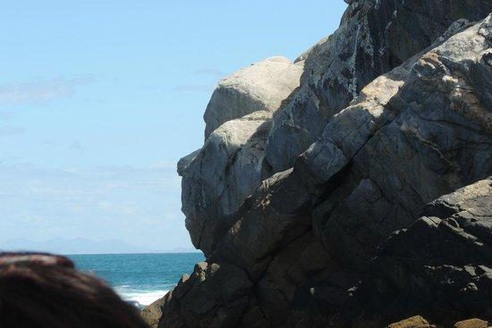 Marinho Turismo Buzios: la cara del mono