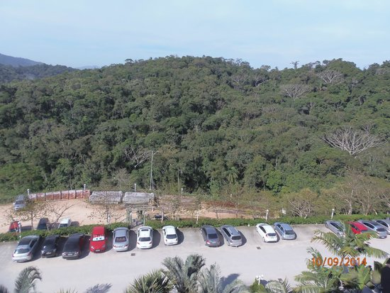 Fazzenda Park Hotel: vista del camino