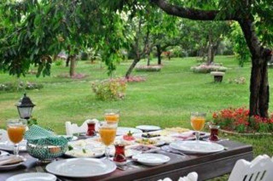 Laterra Restaurant & Bar: La Terra Kahvalti- Turkish Traditional Breakfast